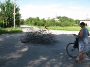 Неразорвавшаяся мина (прикрыли ветками) в Александровске неподалёку от храма