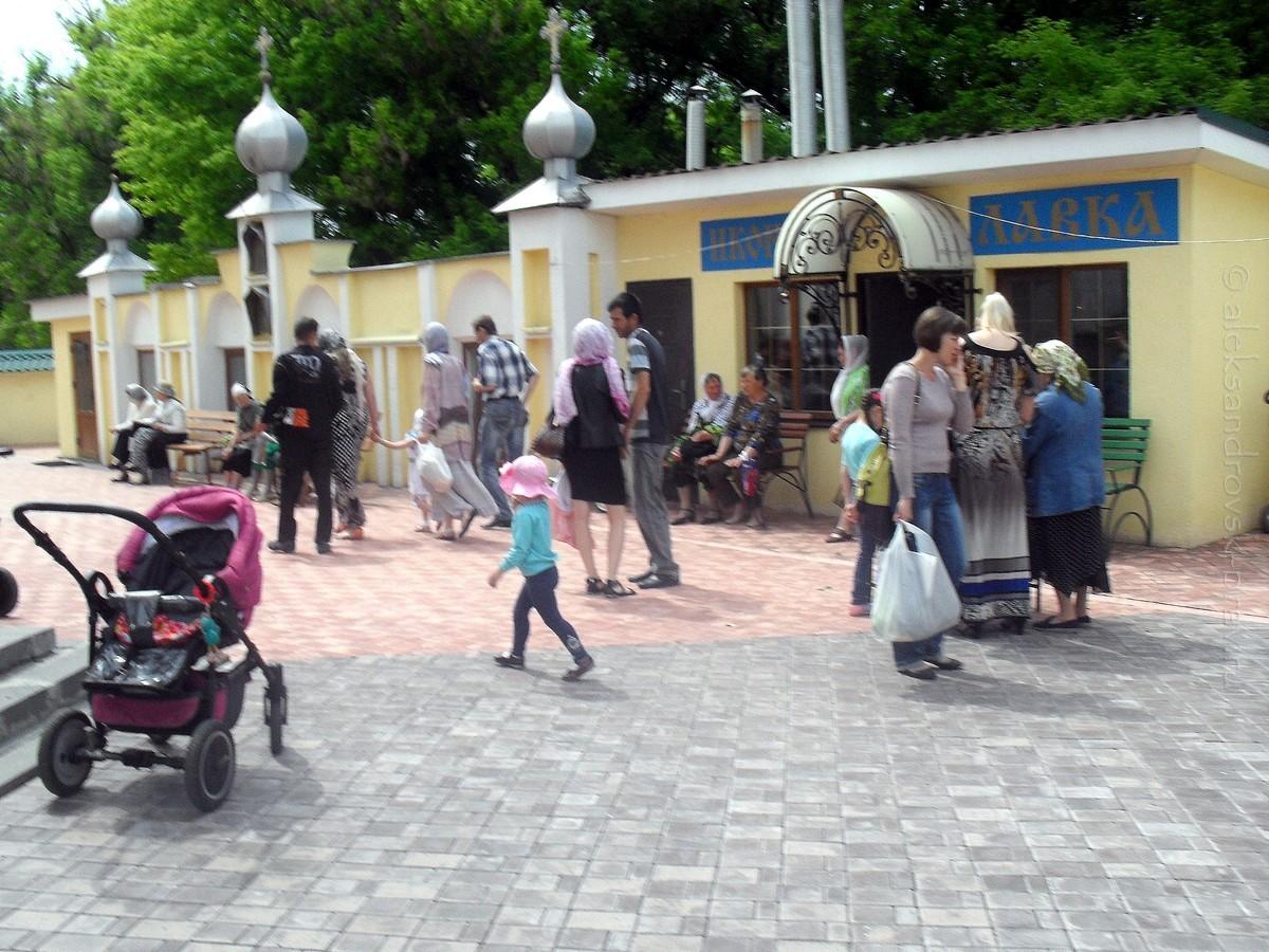 Troitsa_Aleksandrovsk_31-05-2014_36