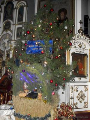 Rozhdestvo-Xristovo Aleksandrovsk 7-Jan-2016 33