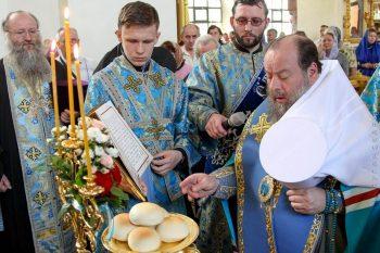 Икона Богородицы Луганская